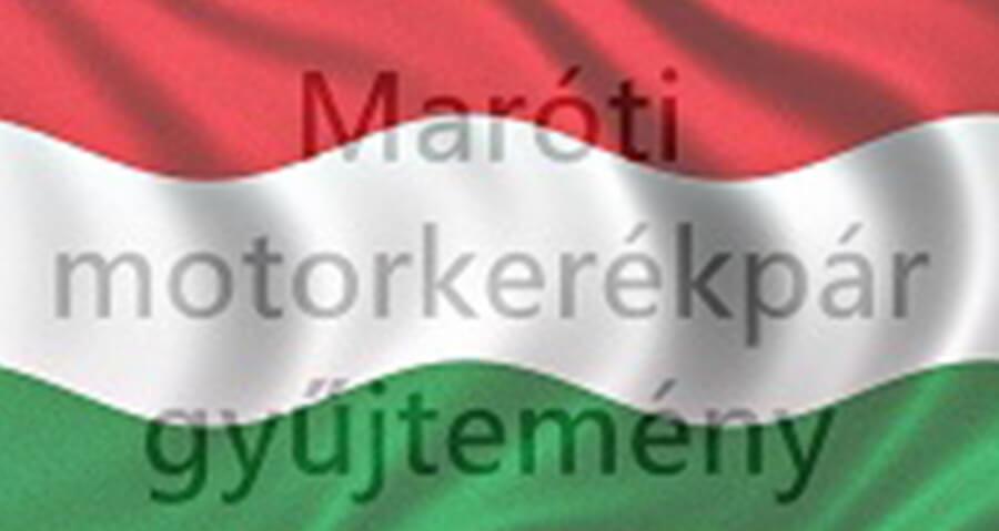 Talpra magyar…